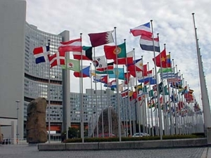 IAEA flags