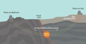 seismicgraphic